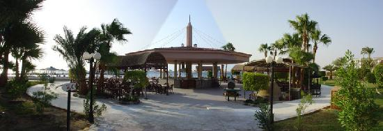 Safaga Palace Resort : Resto de la plage