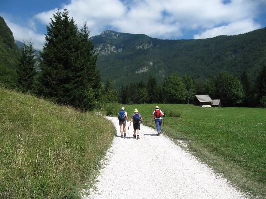 Шкофья-Лока, Словения: Walk to Bohinj waterfall