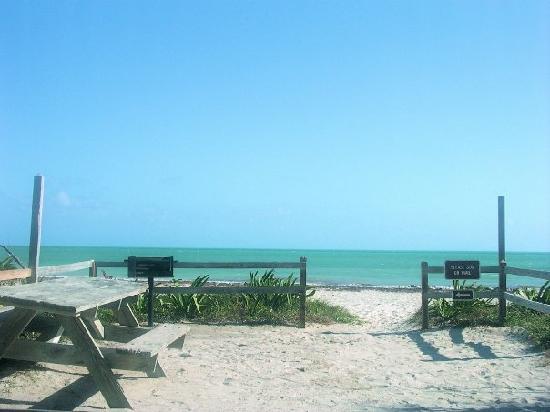 72 Sandspur Beach Camp Site Picture Of Bahia Honda