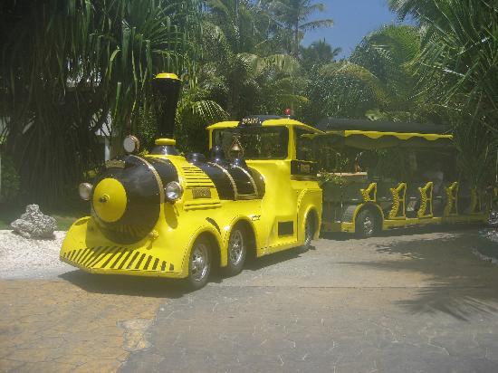 Meliá Caribe Tropical: Trolley/Train