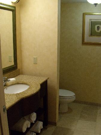 Hampton Inn Clinton: Bathroom
