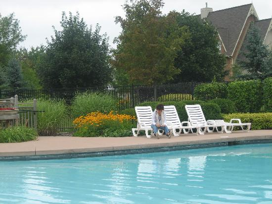 Historic Snowbridge Mountain Homes - Blue Mountain Resort: swimming pool in Historic Snowbridge area