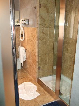 Rechigi Hotel: shower (great)