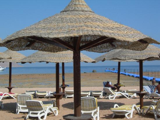 Coral Beach Resort Montazah: la spiaggia