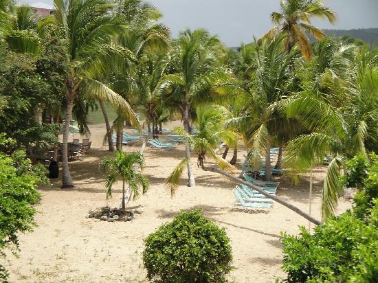 The Buccaneer St Croix: Beach