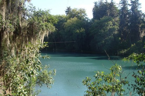 Pachuca, المكسيك: Campo piscicola. Huasca de Ocampo