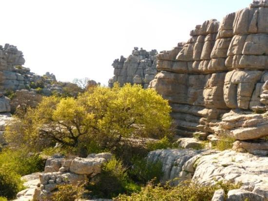 แอนติเครา, สเปน: antequera el torcal relief karstique