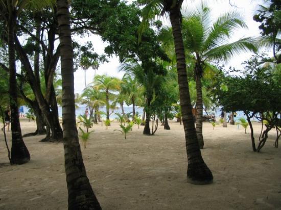 Roatan (เกาะโรอาทาน), ฮอนดูรัส: Tabyana beach