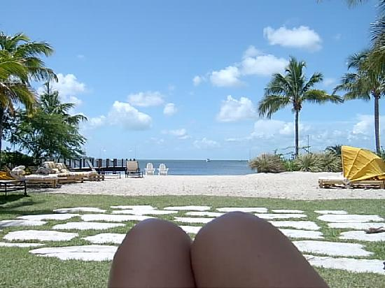 Key West Marriott Beachside Hotel Sitting With My Back To Pool Facing Bay