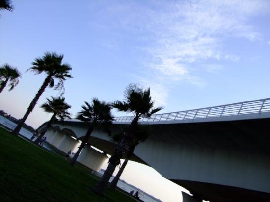 ซาราโซตา, ฟลอริด้า: Ringling Causeway -Sarasota, FL, United States