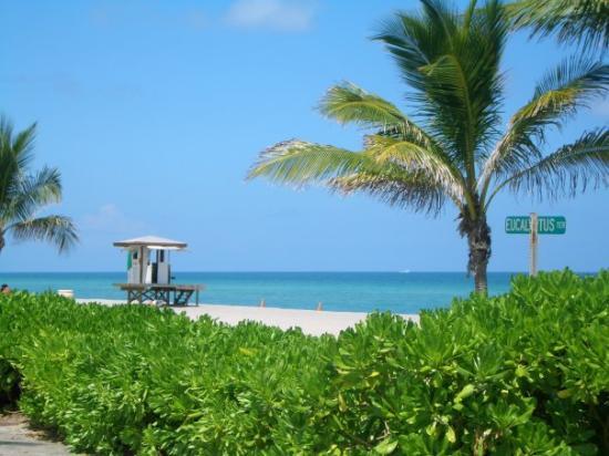 ไมอามี่ีบีช, ฟลอริด้า: Miami