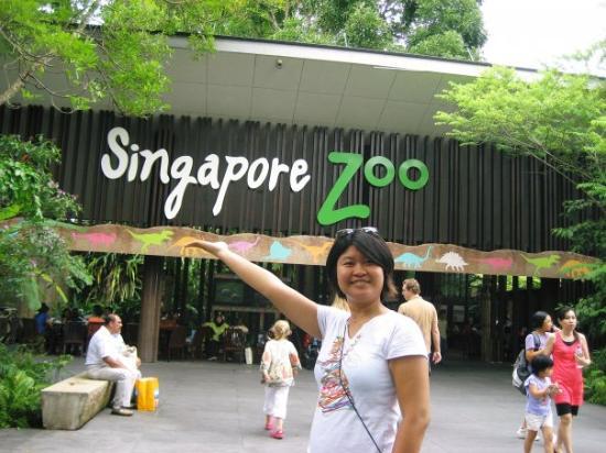 สวนสัตว์สิงคโปร์: At the main entrance!