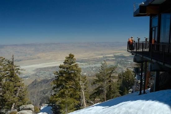 Palm Springs Aerial Tramway: Vista Point.