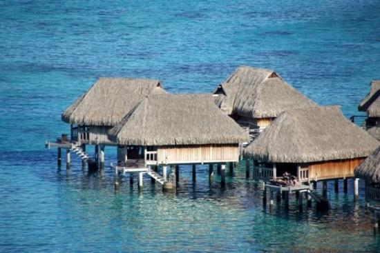 Moorea Overwater Bungalow Picture Of Moorea Society
