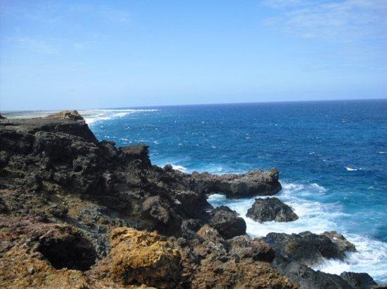 Malmok Reef