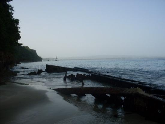 Crashboat Beach : Playa CrashBoat