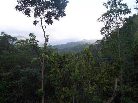 Kandy Samadhi Centre: 部屋から見た景色