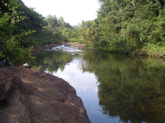 Kandy Samadhi Centre: 近くの泳げる川