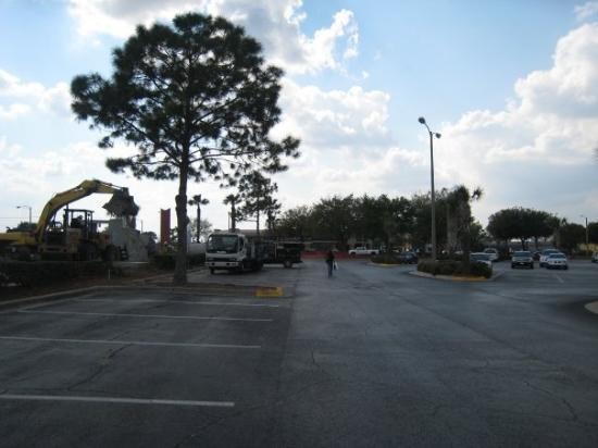 Florida City Photo