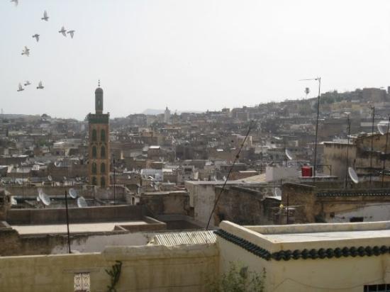 เมดินาแห่งเฟซ: Fes - Birds flying over the city