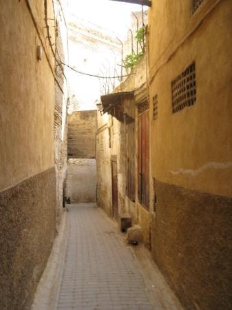 เมดินาแห่งเฟซ: Fes - typical walk way through the Medina. you could totally get lost in this Labrynth....