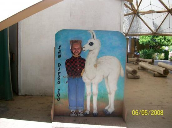 San Diego Zoo: dad and his llama friend