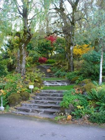 Corbett, OR: one of many gardens here
