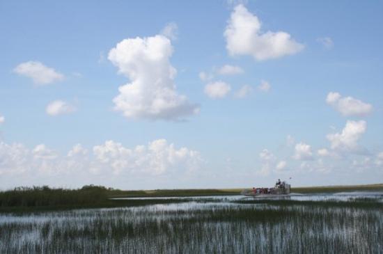 Everglades National Park, ฟลอริด้า: Everglades park