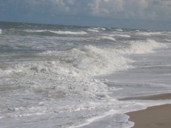 Pelican Beach Satellite Beach Fl