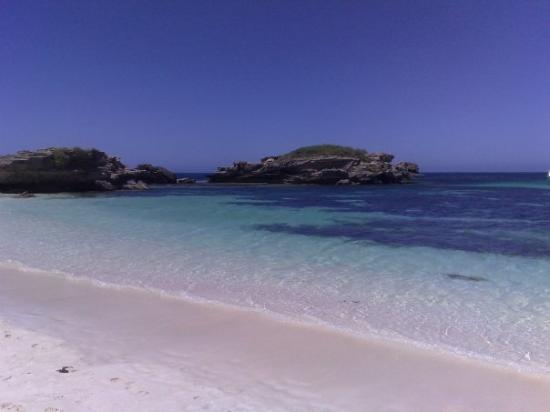 Rottnest Island, ออสเตรเลีย: Great snorkelling spot