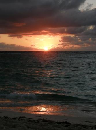 Akumal Beach : Alba