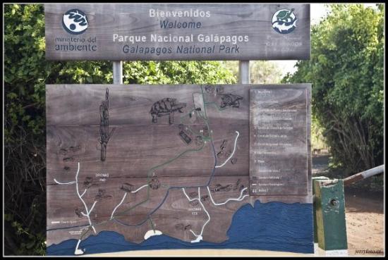ปวยร์โตอาโยรา, เอกวาดอร์: Národní park Galapágy, proto sem lidé jezdí.