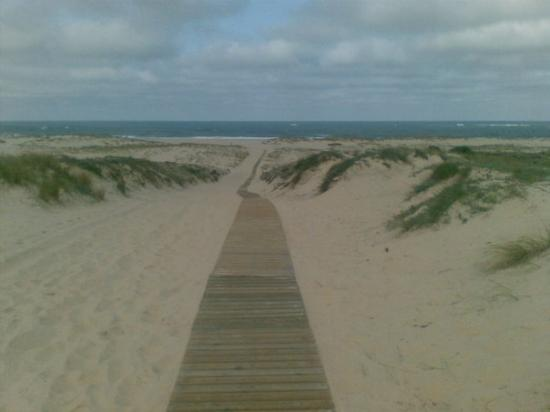 Biscarrosse, ฝรั่งเศส: Page de la Salie - Geiler Strand