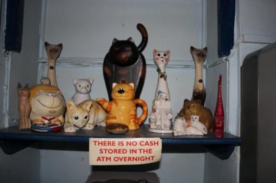 """Salisbury City Guides: Chi va a Salisbury ci deve passare dalla """"The Cat Tavern""""......di fronte la stazione, non vi pot"""