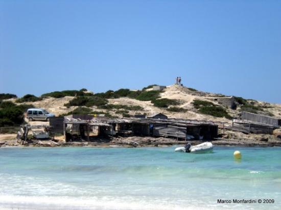 Playa de Ses Illetes Photo