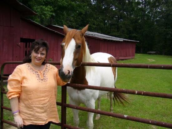 ลิตเทิลร็อก, อาร์คันซอ: Visiting my hometown in Arkansas.