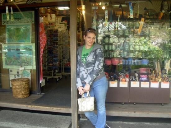 พื้นที่สันทนาการแห่งชาติโกลเดนเกท: Japanese Tea Garden