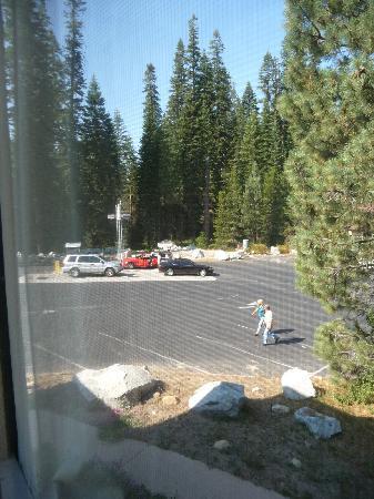 Stony Creek Lodge: Vue depuis la chambre