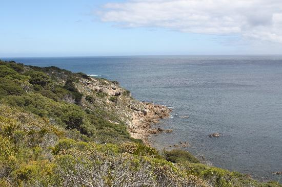 Dunsborough, Australien: Cape Naturaliste 1 6