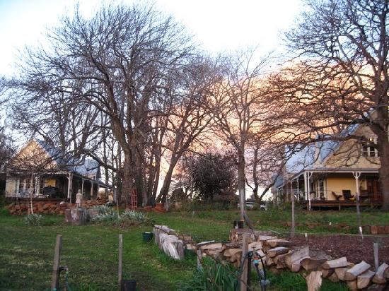 Elm Wood: enjoy sunset at the huge garden