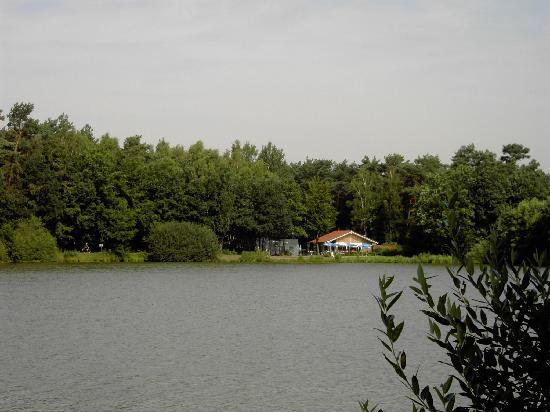 Freren, Alemania: meertje waar we over uitkeken
