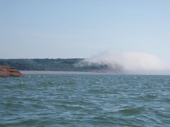 Fundy Trail Parkway: The cloud shrouded shoreline of Fundy Parkway from a kayak on the Bay of Fundy