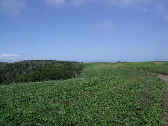 Cape Shireba: どこまで