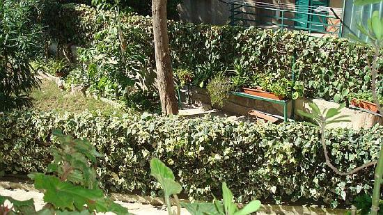Guesthouse Vrlic: garden