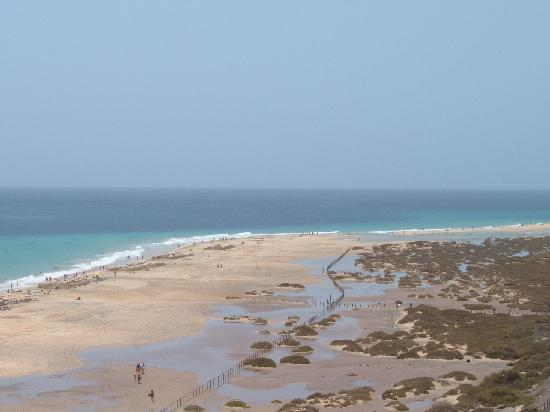 Iberostar Playa Gaviotas: Vistas desde la piscina