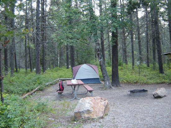 Apgar Campground: Our campsite