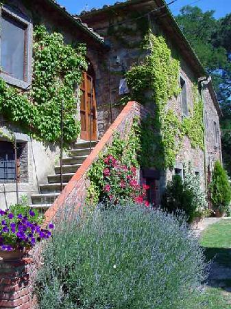 Villa Sant'Andrea: Side view