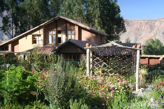 Casa Colibri eco-Lodge: le jardin central