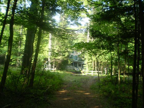 Snow Goose Bed and Breakfast: Beautiful through the trees
