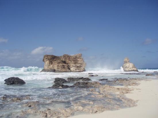 Mersa Matruh, อียิปต์: la spiaggia di cleopatra!!